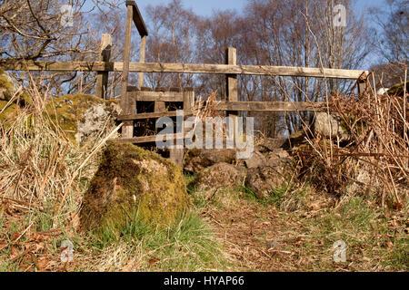 Stile over a drystone wall at Mugdock Country Park, Milngavie, East Dunbartonshire, Scotland - Stock Image