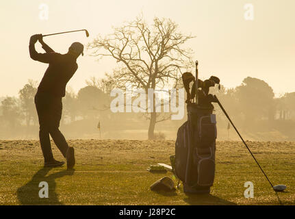 Golfers swinging golf clubs in early morning sun on practice driving range at dawn. - Stock Image