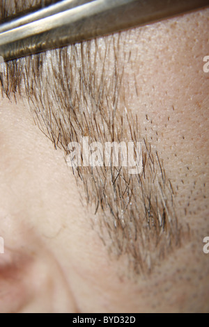 male sideburn - Stock Image
