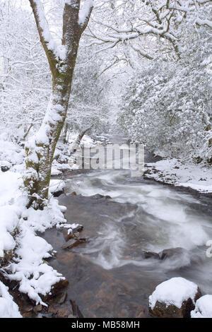 East Okement river in winter near Okehampton Devon Uk - Stock Image