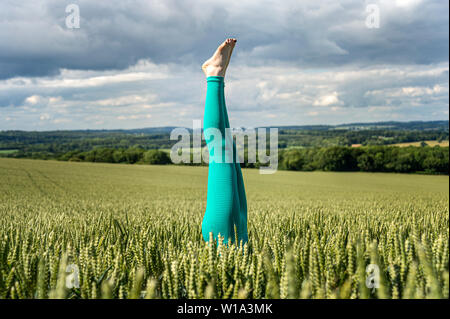 handstand in a field of wheat - Stock Image