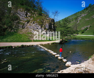 The Stepping Stones across the River Dove, Dovedale, Derbyshire England UK - Stock Image