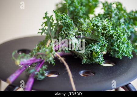 A bunch of fresh Kale salad - Stock Image