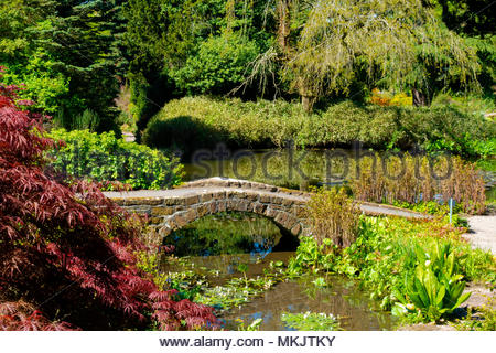 Landscapes & Scenery at The University of Liverpool's Ness Botanical  Gardens, Ness Gardens, Ness, Wirral, Merseyside England UK Credit: Christopher Canty Photography/Alamy Live News - Stock Image