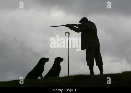 Gamekeeper Mike Nisbet with his dogs on the Tarabuckle Beat Airlie Estate in Angus during the grouse shooting season - Stock Image