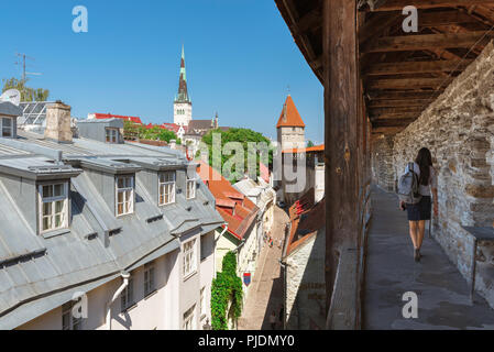 Estonia tourism, a young woman solo traveler walks along the upper gallery of the medieval Hellemann Tower and Town Wall walkway in Tallinn, Estonia. - Stock Image