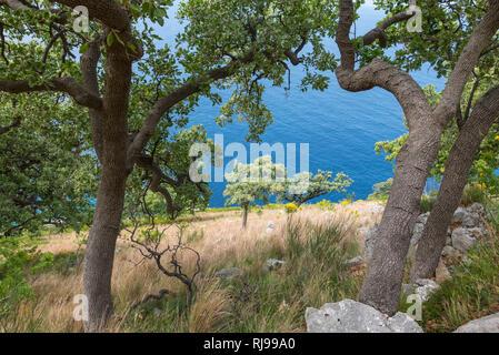 Albanien, Balkanhalbinsel, Südosteuropa, Republik Albanien, Trekking, Grün-Blaues Albanien, Albanische Riviera, Küstentrekking, Küstengebirge, Etappe  - Stock Image
