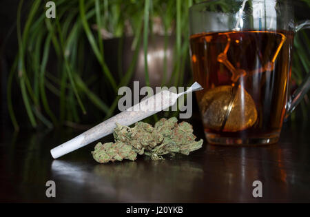 closeup of rolled marijuana weed joint and buds on wooden background, with cup of rooibos tea - Stock Image