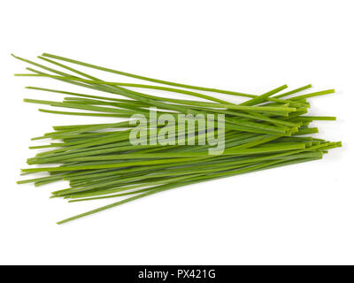 uncut chives on a white background - Stock Image