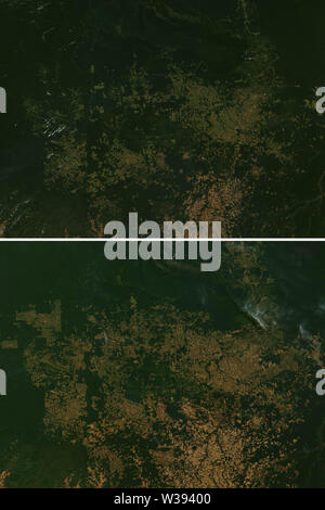 Deforestation patterns in the rainforest between 2001 and 2019 in Rondônia in Brazil - elements of this image furnished by NASA - Stock Image