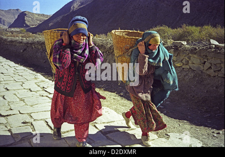 Nepalese Tibetan style women carrying baskets of apples with head bands to Marpha in Kali Gandaki valley Annapurna - Stock Image