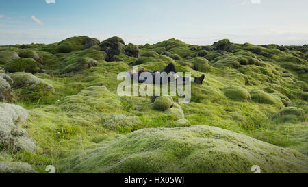 Side view of woman laying in mossy field in remote rocky landscape under clear blue sky - Stock Image