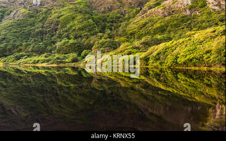 Pollacappul Lake, Connemara, Co Galway is almost perfectly still after sunset with perfect reflection and Kylemore - Stock Image