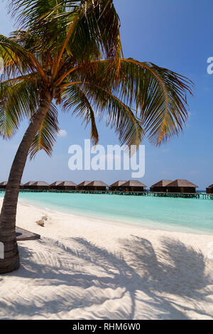 Maldives Beach - the beach and resort, Veligandu Island, Rasdhoo atoll, the Maldives Asia - Stock Image