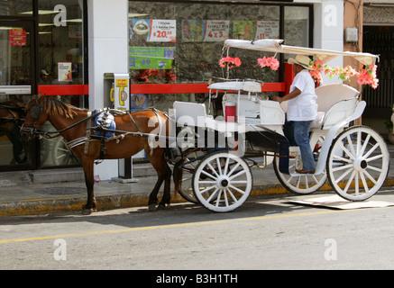 Horse and Carriage Taxi, Merida, Yucatan Peninsular, Mexico - Stock Image