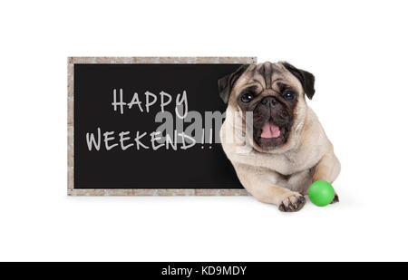 cute happy pug puppy dog with green ball and blackboard sign with text happy weekend, isolated on white background - Stock Image