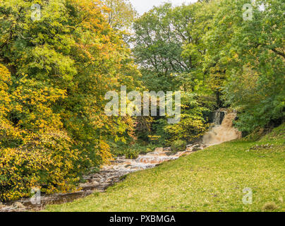Yorkshire Dales National Park autumn landscape, Scar House waterfall, Thwaite, Swaledale, in spate - Stock Image