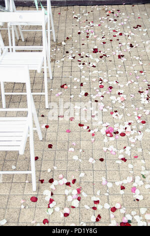 path strewn with rose petals at the wedding ceremony - Stock Image