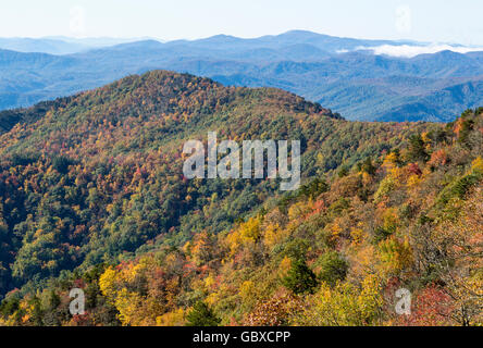 Mountain trees in the fall Blue Ridge Parkway, NC - Stock Image