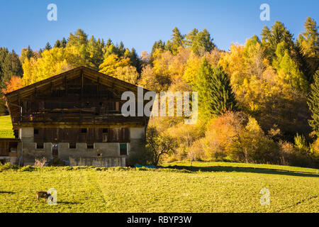 autumnal view of beautiful Ultimo Valley (Ultental), Dolomites in South Tyrol, Trentino Alto Adige, Bolzano, northern Italy.typical mountain barn - Stock Image