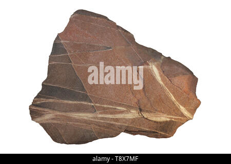 Triassic Sandstone - Stock Image