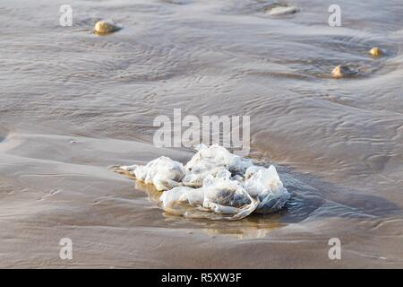 Plastic bag washed up from Atlantic Ocean on sand beach Agadir, Morocco - Stock Image