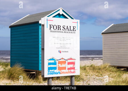 Traditional wooden beach huts for sale sign on Moray Firth coast. Findhorn, Moray, Scotland, UK, Britain - Stock Image