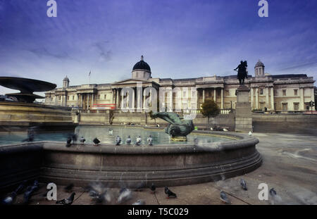 The National Gallery and fountains in Trafalgar Square, London, England, UK. Circa 1980's - Stock Image