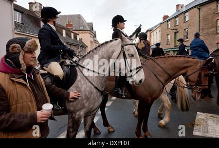 Two horses at hunt meet - Stock Image
