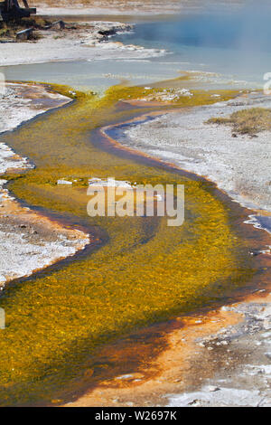 Black sands geyser basin in the Yellowstone National park, USA - Stock Image
