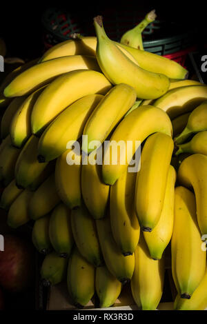 Bananas for sale in the market of Sanary sur Mer, France - Stock Image