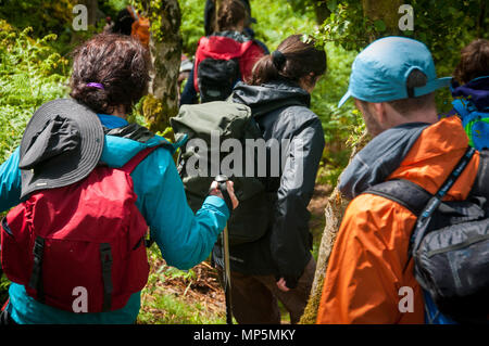 Hikers in countryside - Stock Image