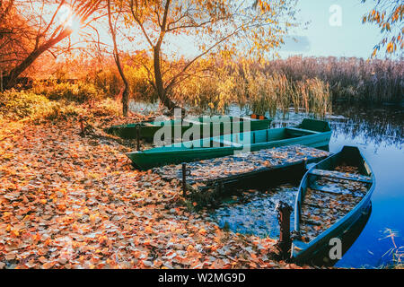 River shore strewn with fallen yellow leaves moored wooden boats on the water at sunset the sun shines through the branches of a tree - Stock Image