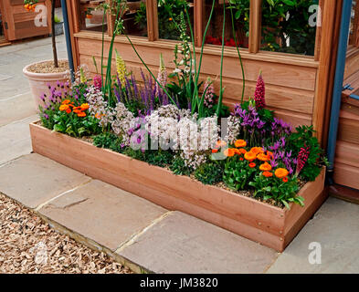 Greenhouse display with planting in a raised container - Stock Image