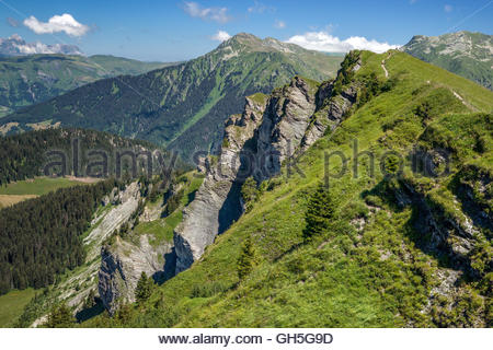 Roche Parstire near Beaufort in Savoie (France) - Stock Image