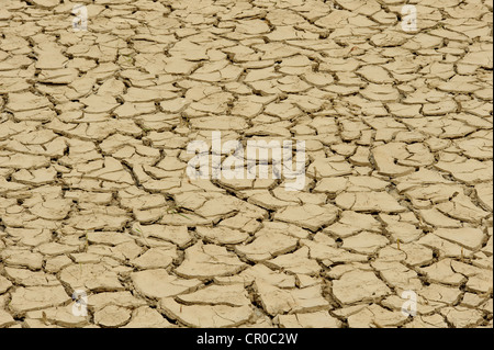 Parched, cracked mud at bottom of dried out pond in drought conditions. Essex, England. April 2010. - Stock Image