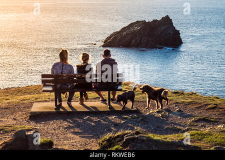A family and their dogs sitting on a bench enjoying the evening light on East Pentire in Newquay in Cornwall. - Stock Image