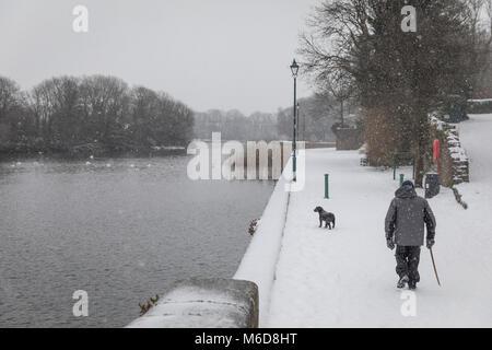 Pembrokeshire, Wales, 2nd March 2018. A rare snow filled scene - a dog walker Pembroke Castle mill pond, Pembroke - Stock Image