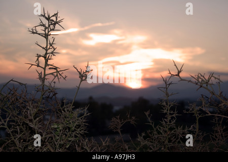 Sunset in hills above Fuengirola, Spain, nightfall, evening sunlight dusk Sierra Blanca country side countryside rural rustic - Stock Image