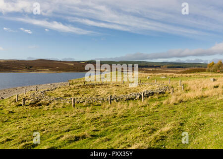 Timber circle and ring cairn Brenig 44 with the burial mound Boncyn Arian or Brenig 45 behind it. Dated to 2000 - 1500 BC and located at Llyn Brenig - Stock Image