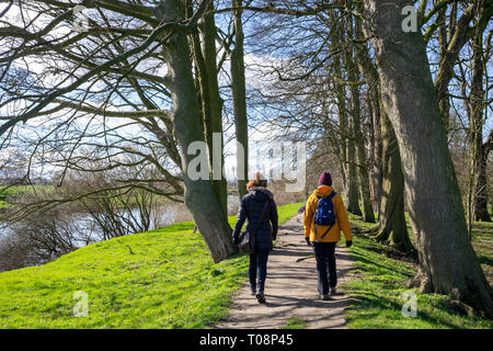 Winter walk on the levee above the River Ouse, Beningbrough, North Yorkshire, UK - Stock Image