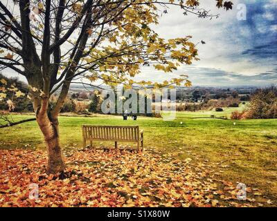 View across The Hampshire Golf club near Andover, Hampshire, England, UK - Stock Image