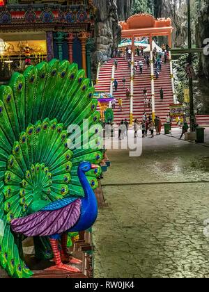 Batu Caves, Peacock, Mount of Lord Murugan, Hindu God of War, Selangor, Malaysia. - Stock Image