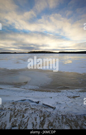 New ice is growing on a forest lake in late autumn. - Stock Image
