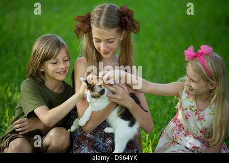 Three children petting calico cat - Stock Image