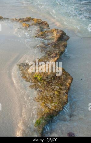Beach Detail - Stock Image