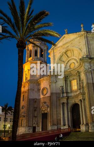 Spain, Cadiz, Plaza de la Catedral, Cathedral illuminated at night - Stock Image