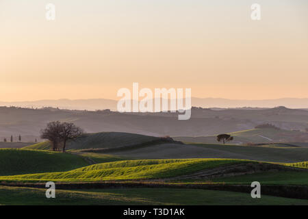 Beautiful view of Tuscany landscape hill at sunset, with mist and warm colors - Stock Image