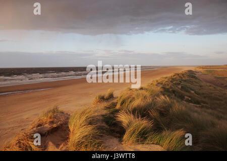 Sunset on Sand Dunes at Holkham Beach, Wells-Next-The-Sea, Norfolk, England UK - Stock Image