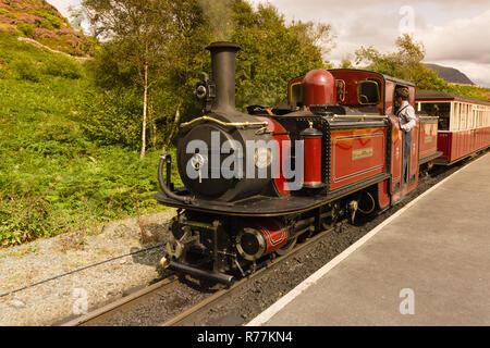 Narrow gauge Double Fairlie steam locomotive Merddin Emrys of the Ffestiniog Railway Company the heritage line - Stock Image